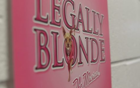 Legally Blonde: Behind the scenes