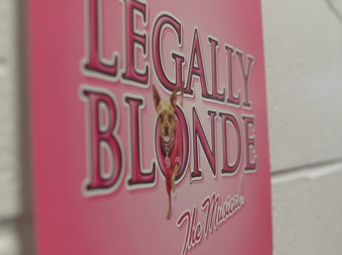 Legally+Blonde%3A+Behind+the+scenes